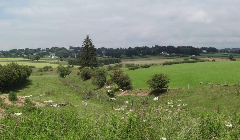 Uitzicht over Oostkantons nabij Honsfeld