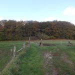 GR 512 Etappe 4: Lubbeek – Vertrijk