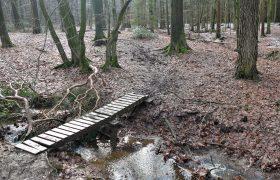 Ost-Hertogenwald